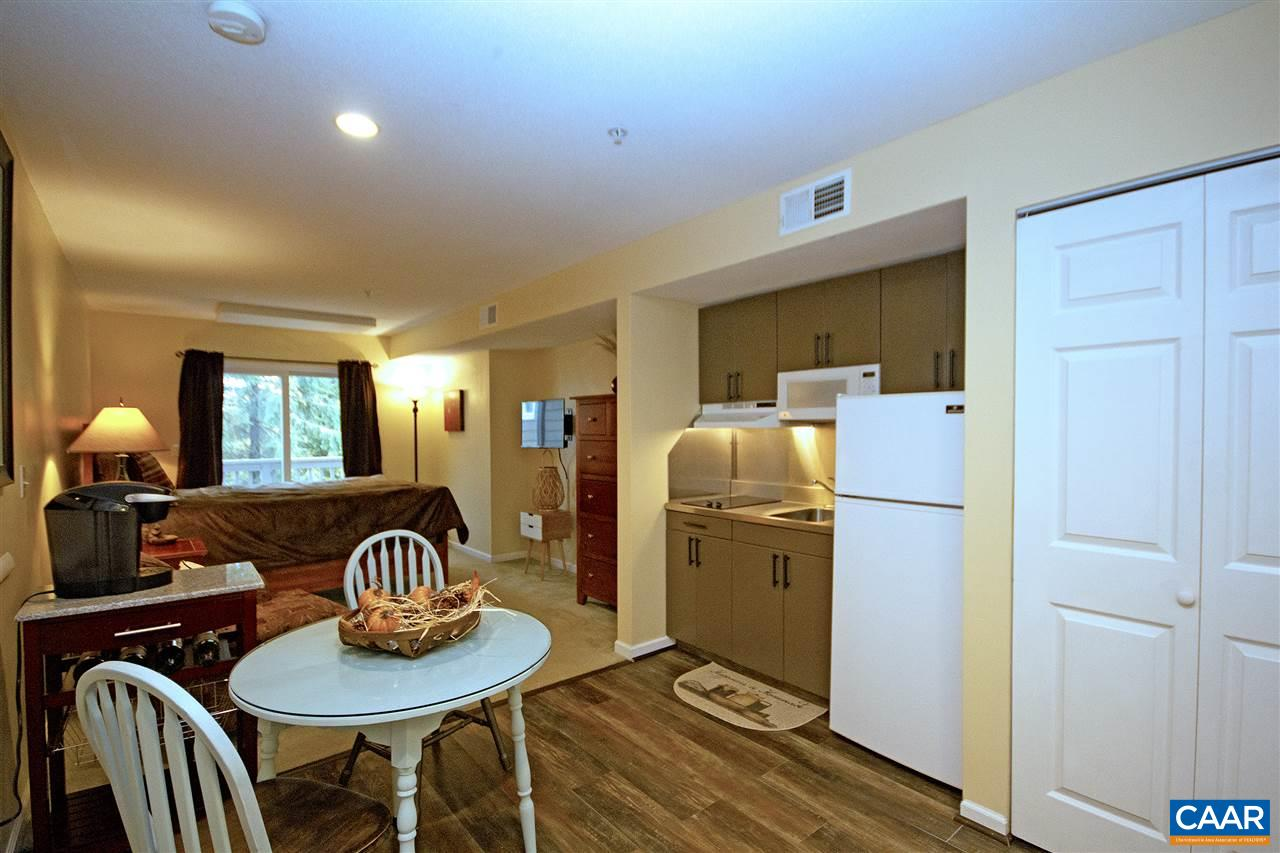 2076 STONE RIDGE CONDOS, WINTERGREEN RESORT, VA 22967