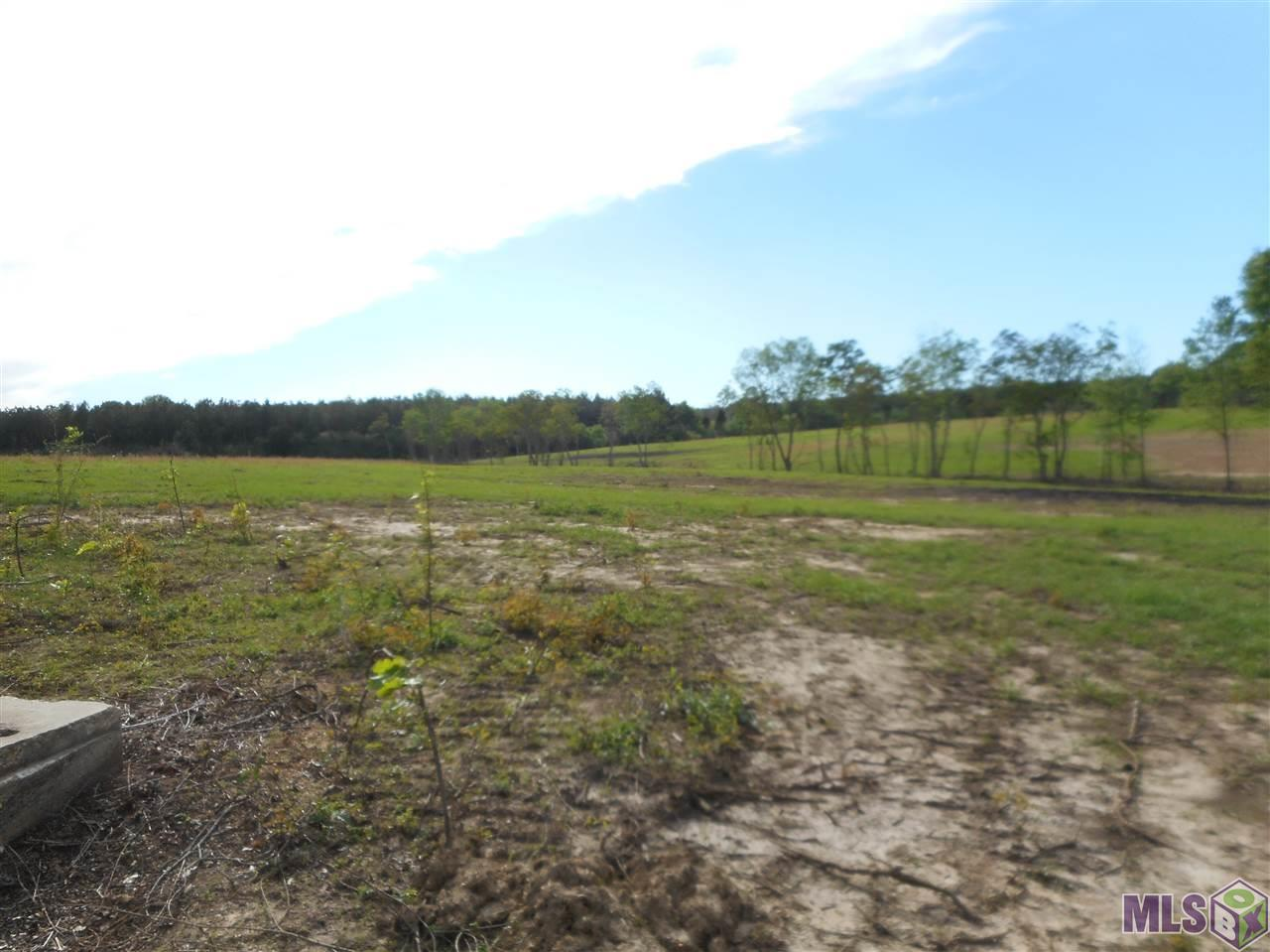 TBD Lot  X3B LA HWY 955, Ethel, LA 70730