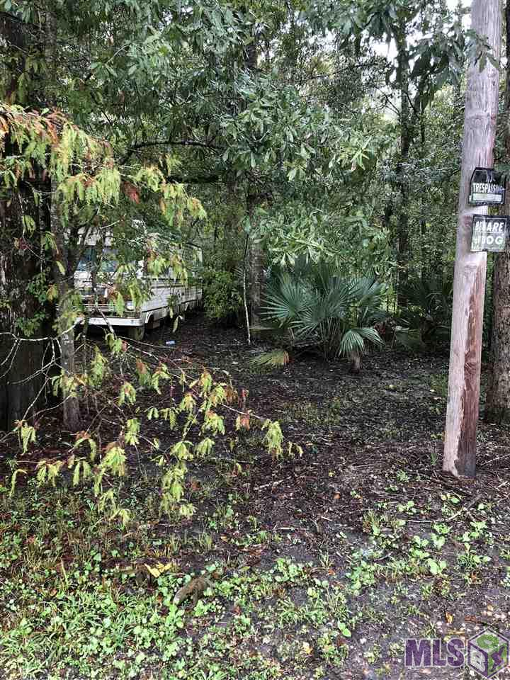 Lot 20 AMITE RIVER RD, St Amant, LA 70774
