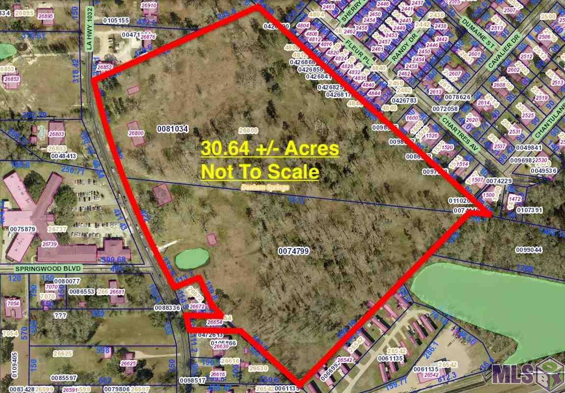 Over 30.5 acres located within the city limits of Denham Springs. This tract has over 900 feet of continuous frontage, plus another 65 feet of frontage access, all on La Hwy 1032 (4-H Club Road). The land is clear with only mature trees remaining and free and clear of wetlands, there is an approved wetlands jurisdictional determination report available through the U.S Army Corps of Engineers. Great tract of land available for a multitude of opportunities, schedule your viewing appointment today! *Lot dimensions not warranted by Realtor.