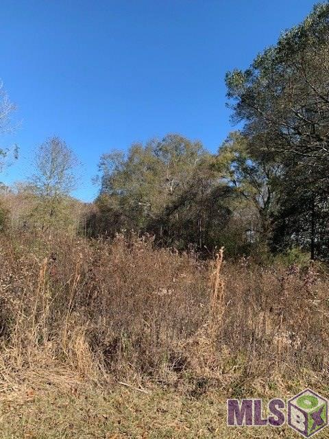 Almost 4.5 acres in Zachary School District!  This property is in a wonderful location on Main St (Hwy 64).  Currently zoned residential