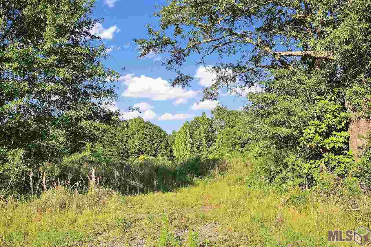Rare Find! 24+ Acre Tract in the highly desirable Central Community School District! This land is located halfway between Central and Zachary – with a country feel, but close to the city, it is perfect for development.  With this much land it would be ideal for smaller subdivision lots, or larger estate-sized lots. Don't wait on this one – Call Today!