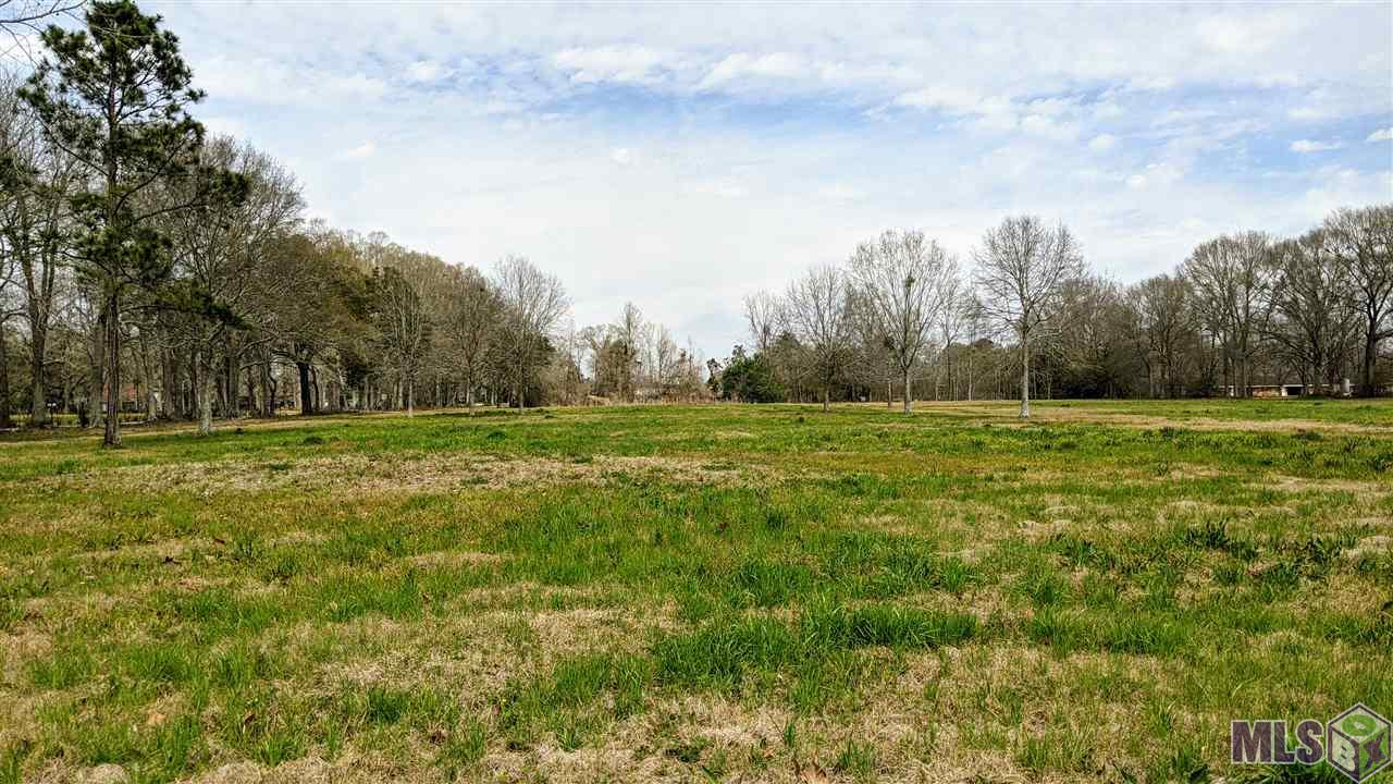 ALMOST 10 ACRES to build your dream home or a new construction development. FLOOD ZONE X - No flood insurance required. LEVEL, HIGH & DRY and CLEARED land with 3 outlets to the property (12433 Forrest Braud Ln, 12408 Juliet St., and HWY 74 next to Palmer Wrecking Service.) Land was previously used for horses and had a mobile home which has been removed. These are 2 tracts the owner will be selling together (will NOT subdivide). Main entry will be the gate off HWY 74. Appointment only please.