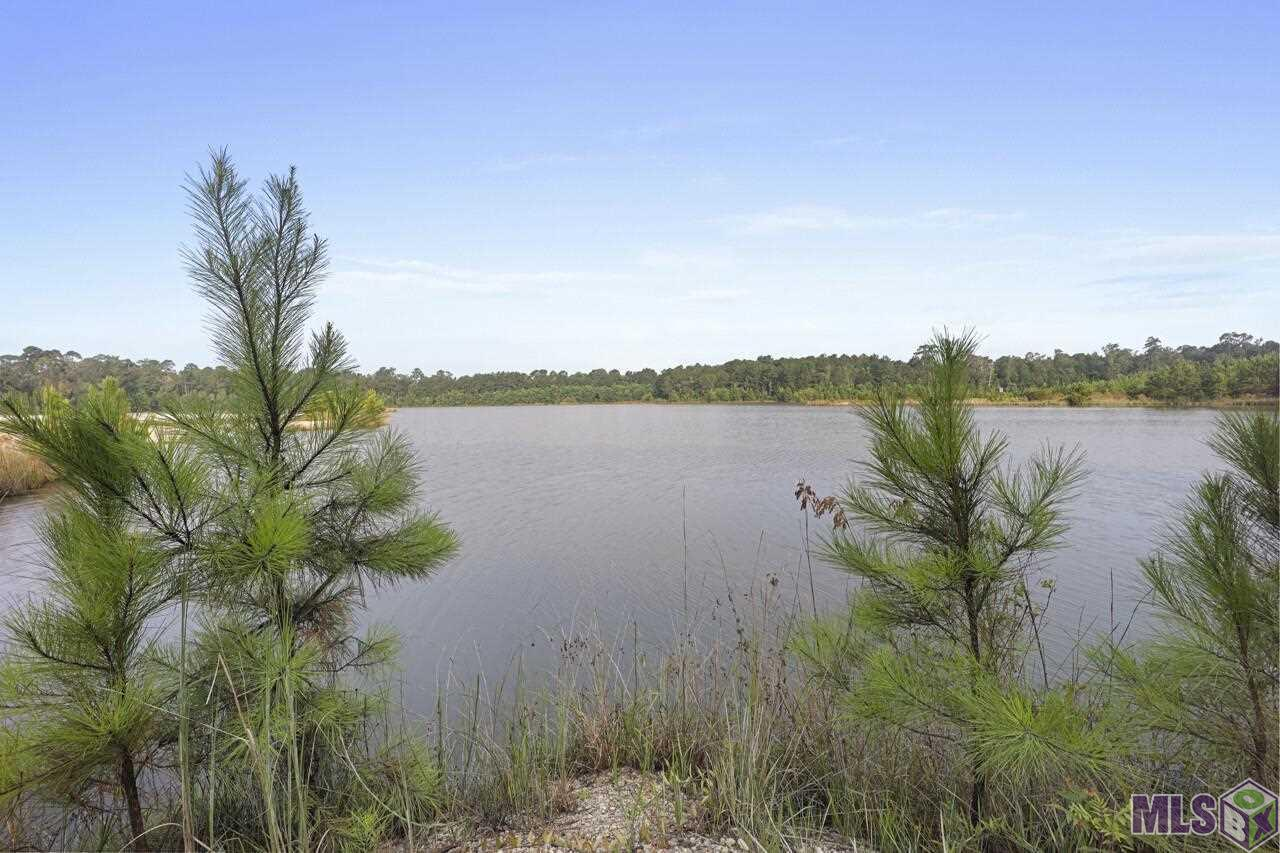Large tract of land just North of Watson in the NW corner of Livingston Parish. This tract is very easily accessible from LA Hwy 16 and La Hwy 63 which provides easy access to I-12 in Denham Springs, Walker, or Livingston, and I-55 in Amite. This tract is a mixture of large lakes, open land, young timber, and has great roads and trails throughout. There is electricity already in place, ran to the middle of the property. This property offers great fishing and hunting with three large beautiful lakes, one with a private sandbar, an abundance of wildlife, and endless other recreational opportunities such as ATV riding, jet skiing, shooting, and anything else imaginable. This tract would be a great place for a home site, a family compound or other possibilities including a large lot development or an RV park offering outdoor recreational activities. Opportunities are endless, don't miss out, schedule your viewing appointment today! *Lot dimensions not warranted by Realtor.